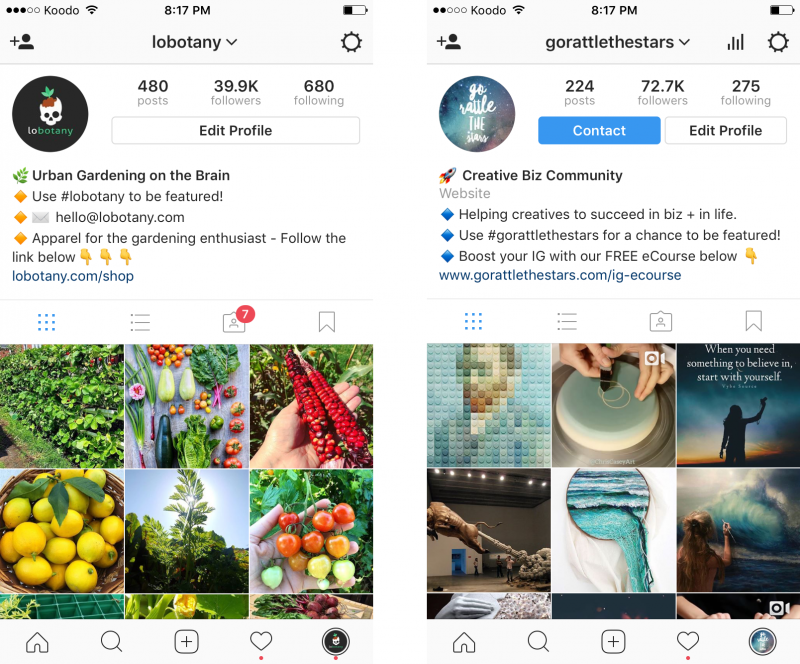 create the best instagram bio to get followers